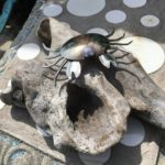 drift wood crab ornament decoration